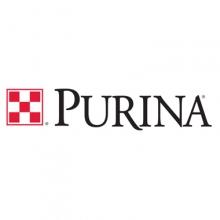 Пурина